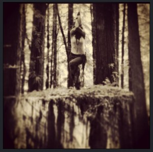 Magda Freedom Rod in Eagle pose atop an 8' high ancient redwood tree stump