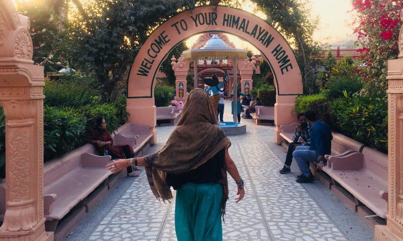 Spring Panchakarma Retreat in India